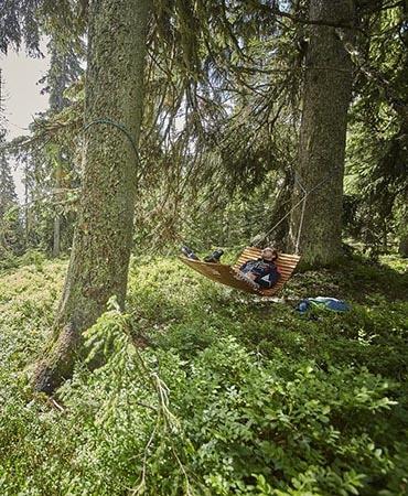 Waldwellness (c) saalbach.com, Daniel Roos (21) 1200x800